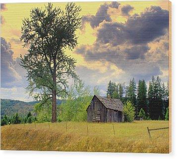 Washington Homestead Wood Print by Marty Koch