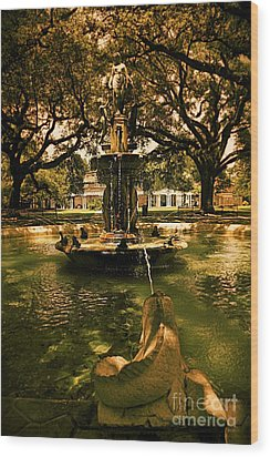 Water Fountain Wood Print by Janice Spivey