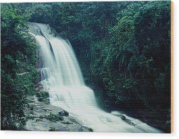 Waterfall Wood Print by Amarildo Correa