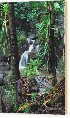 Waterfall El Yunque National Forest Wood Print by Thomas R Fletcher