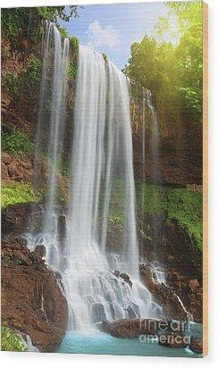 Waterfall Wood Print by MotHaiBaPhoto Prints