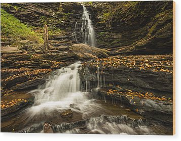 Ricketts Glen State Park Pennsylvania Wood Print