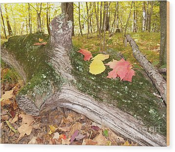 Weatherlog-18 Wood Print by The Stone Age