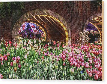 Welcoming Tulips Wood Print by Sandy Moulder