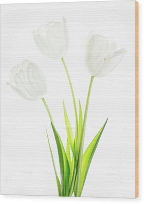 Wood Print featuring the photograph White On White by Rebecca Cozart