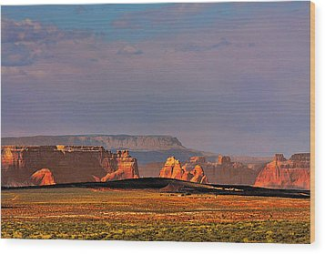 Wide-open Spaces - Page Arizona Wood Print by Christine Till