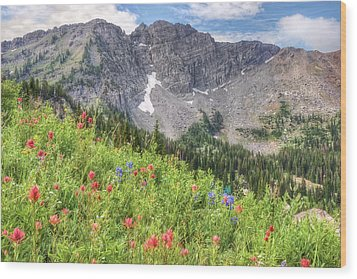 Wildflowers In Albion Basin Utah Wood Print