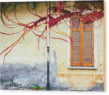 Wood Print featuring the photograph Window And Red Vine by Silvia Ganora