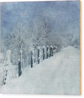 Wood Print featuring the photograph Winter by Angie Vogel
