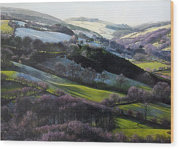 Winter In North Wales Wood Print