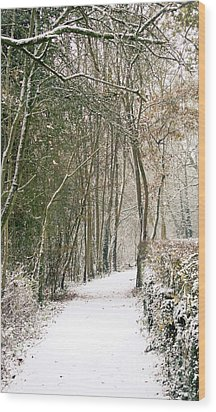 Winter Journey Wood Print by Andy Smy