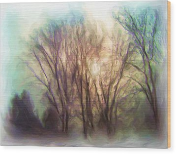 Winter Park Wood Print