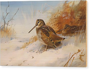Winter Woodcock Wood Print