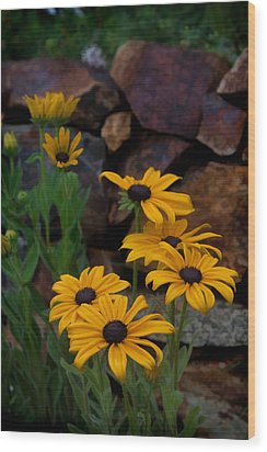 Yellow Beauty Wood Print by Cherie Duran
