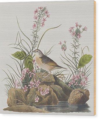 Yellow-winged Sparrow Wood Print by John James Audubon