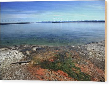 Wood Print featuring the photograph Yellowstone Lake Colors by Frank Romeo
