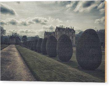 Yesterdays Wealth Wood Print by Stewart Scott