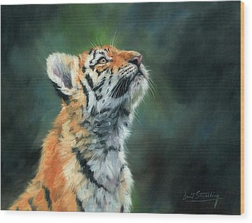 Wood Print featuring the painting Young Amur Tiger by David Stribbling