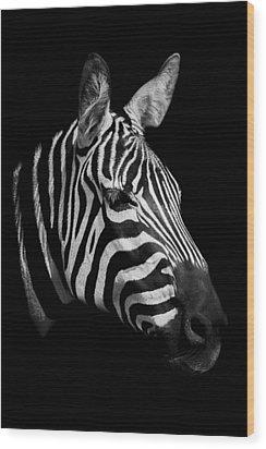 Zebra Wood Print by Paul Neville