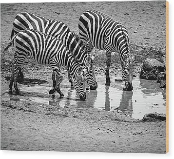 Wood Print featuring the photograph Zebras At The Watering Hole by Marion McCristall