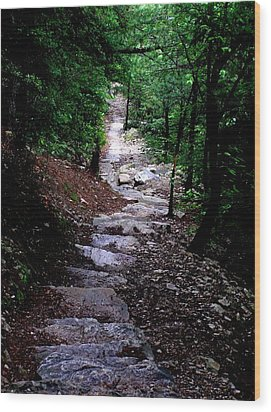 1000 Steps In Mifflin Co Pa Wood Print by Jeanette Oberholtzer