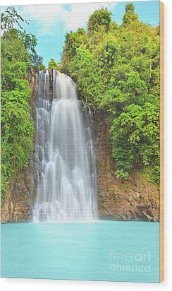 Waterfall Wood Print by MotHaiBaPhoto Prints