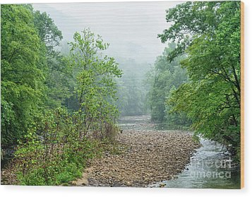 Wood Print featuring the photograph Williams River Summer Mist by Thomas R Fletcher