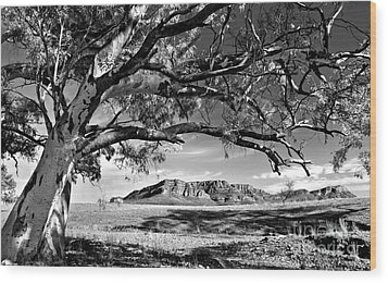 Wilpena Pound  Wood Print by Bill  Robinson