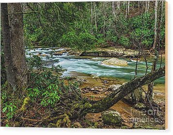 Wood Print featuring the photograph Back Fork Of Elk River by Thomas R Fletcher