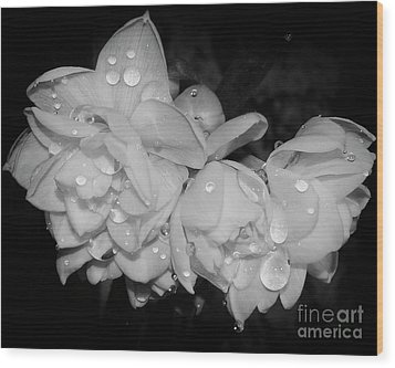 Wood Print featuring the photograph Flowers by Elvira Ladocki