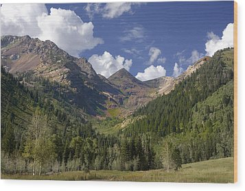 Mountain Meadow Wood Print by Mark Smith