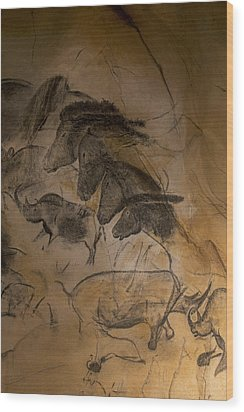 150501p086 Wood Print by Arterra Picture Library