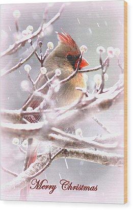 1554-003 Cardinal Wood Print