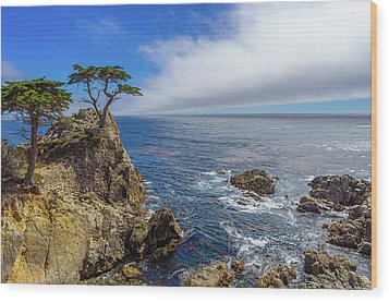 Wood Print featuring the photograph 17 Mile Drive Pebble Beach by Scott McGuire