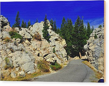Yellowstone Park Wood Print by Aron Chervin