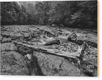 Wood Print featuring the photograph Williams River Summer by Thomas R Fletcher