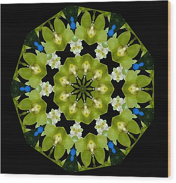 Wood Print featuring the photograph 19-petaled Lucky Shamrock by Baha'i Writings As Art