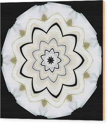 Wood Print featuring the photograph 9 Petaled Designs by Baha'i Writings As Art