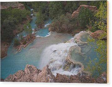A Blue Waterfall Wets The Arid Wood Print by Taylor S. Kennedy