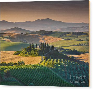 A Morning In Tuscany Wood Print