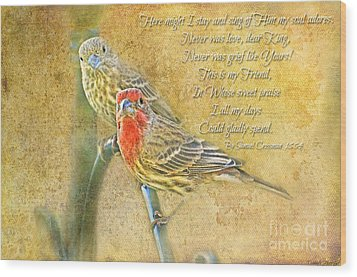 A Pair Of Housefinches With Verse Part 2 - Digital Paint Wood Print by Debbie Portwood