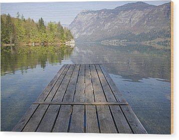 Alpine Clarity Wood Print by Ian Middleton