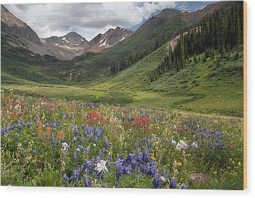 Alpine Flowers In Rustler's Gulch, Usa Wood Print by Bob Gibbons