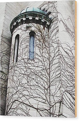 Architecture Series Wood Print by Ginger Geftakys