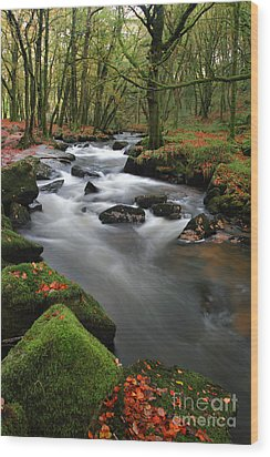Autumn At Golitha Falls Wood Print by Carl Whitfield