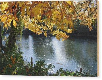 Autumn Wood Print by Sergey and Svetlana Nassyrov