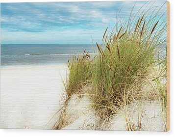 Wood Print featuring the photograph Beach Grass by Hannes Cmarits