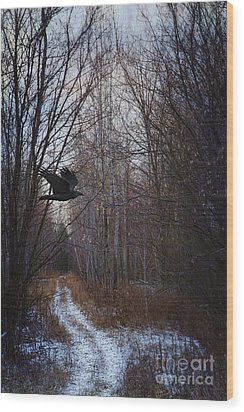 Black Bird Flying By In Forest Wood Print