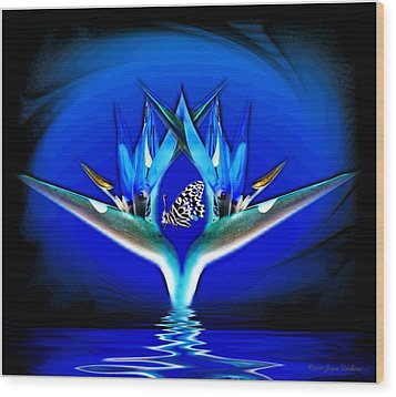 Blue Bird Of Paradise Wood Print by Joyce Dickens