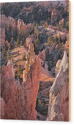 Wood Print featuring the photograph Bryce Canyon Sunrise by Stephen  Vecchiotti